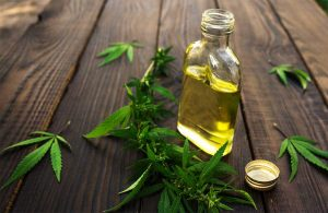 hemp leaf and oil bottle